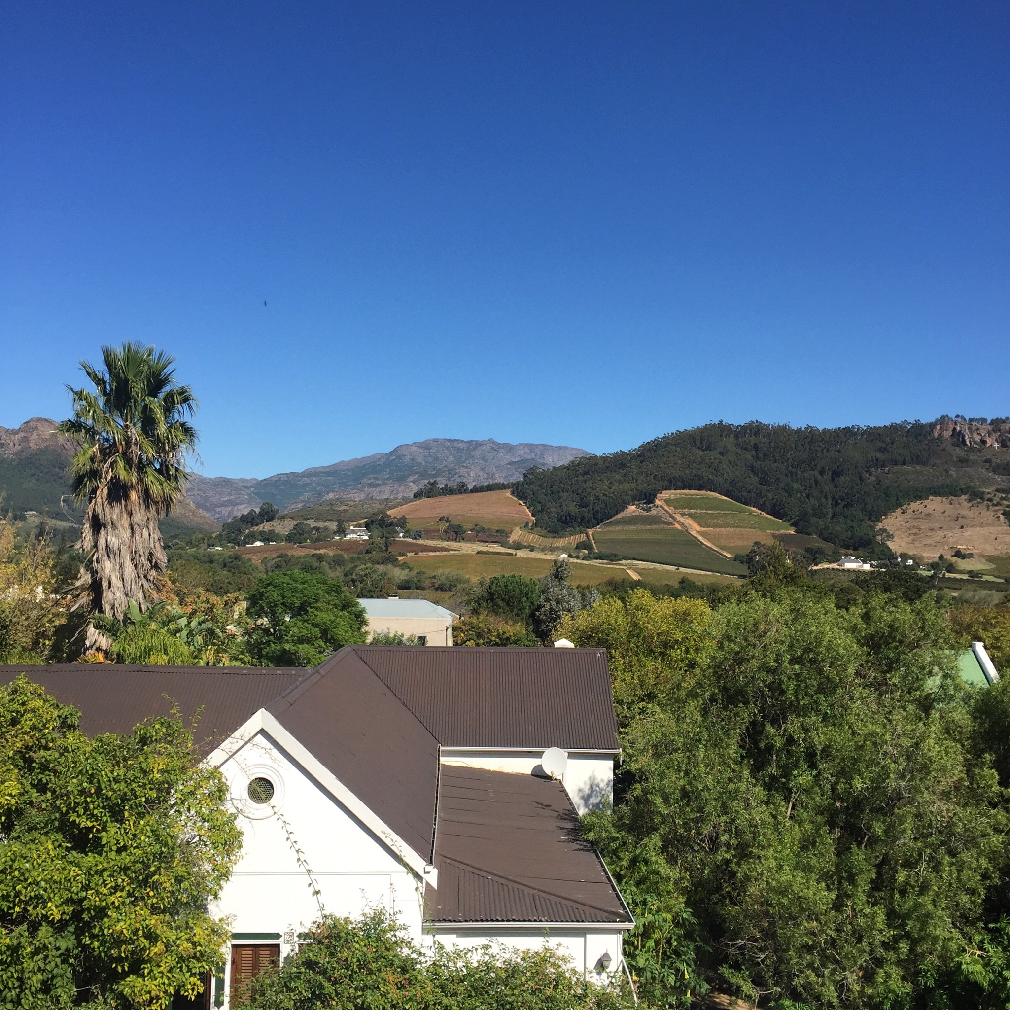 Justdial Hotels: The Franschhoek Boutique Hotel: Why You Must Stay Here