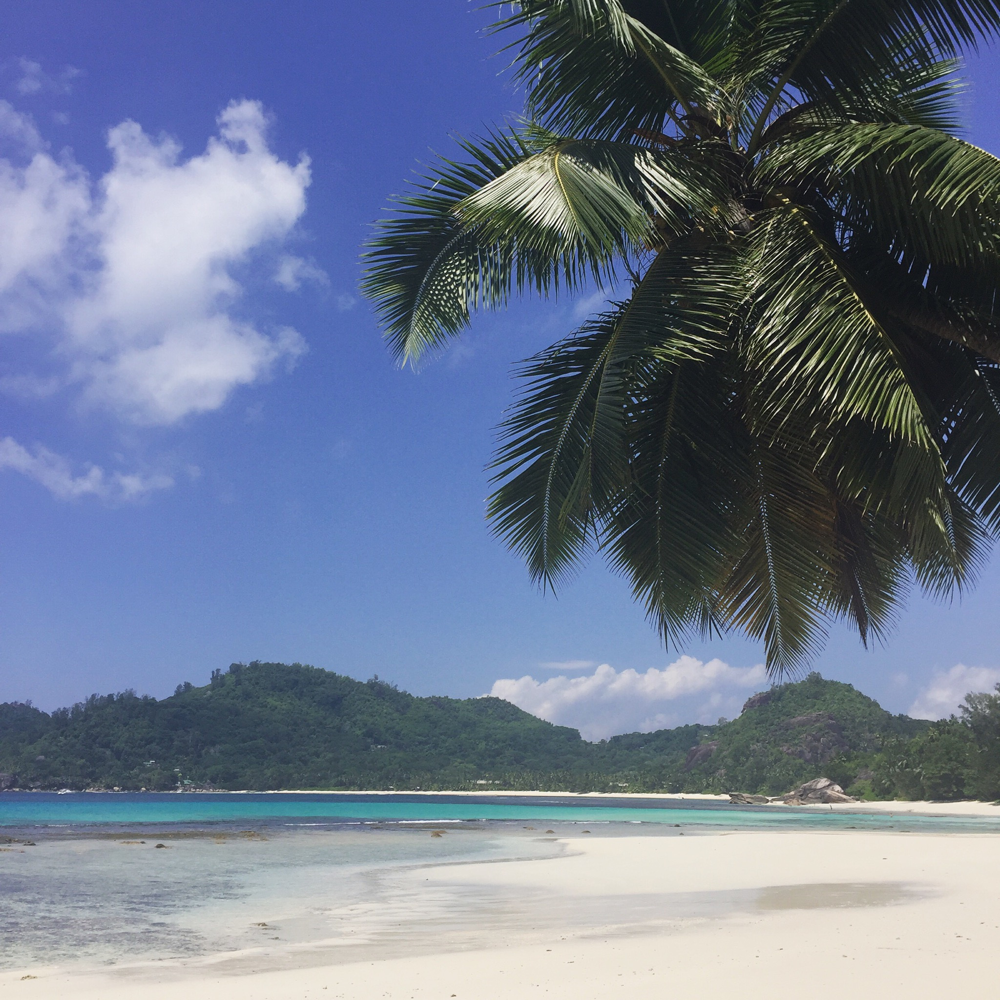 Seychelles Beach: The Ultimate Travel Guide To The Seychelles